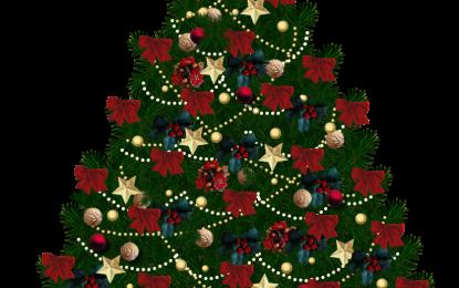 Istoricul pomului de Crăciun